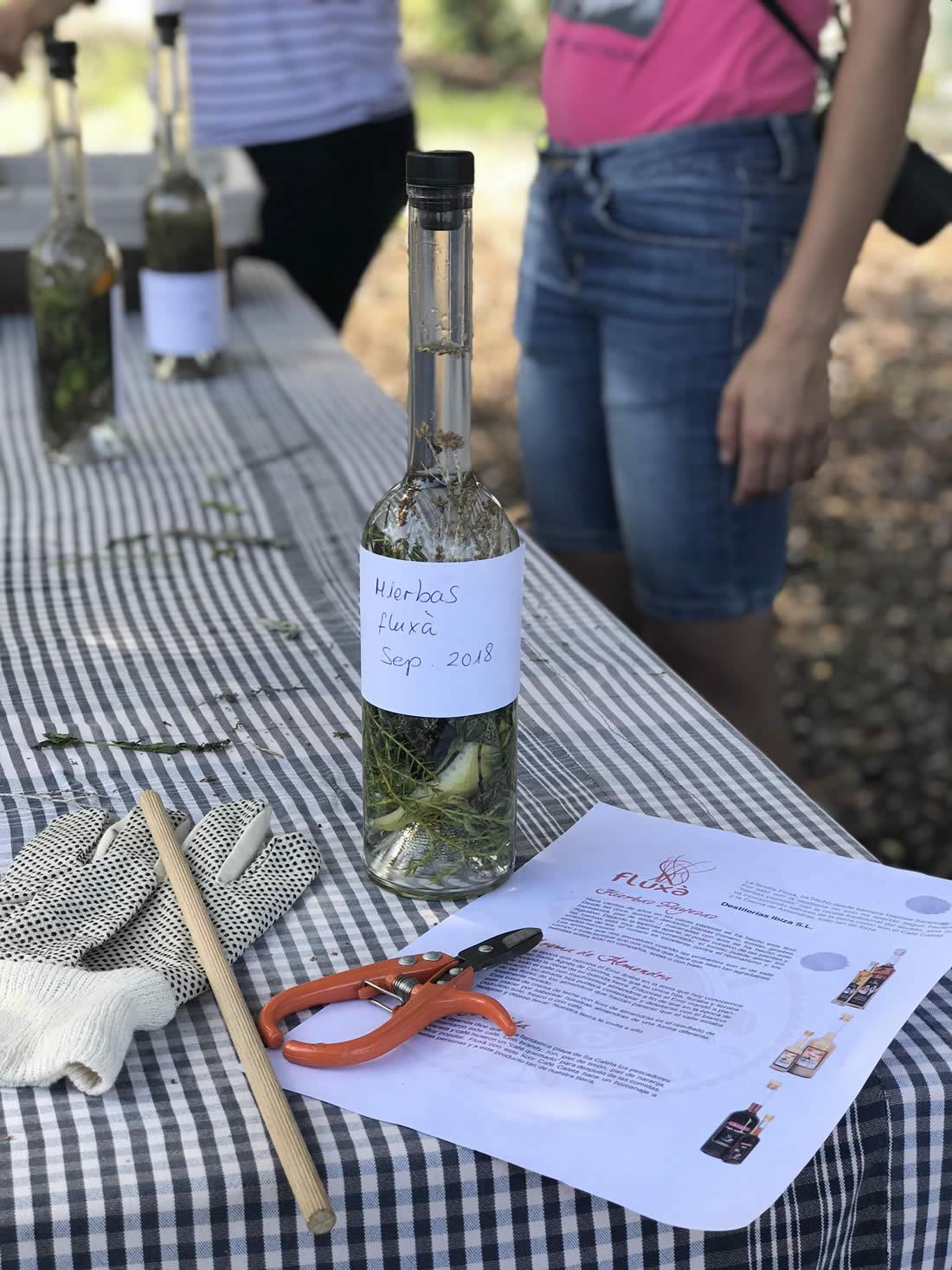 taller hierbas ibicencas fluxa ibiza creativa 2