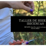 TALLER DE hierbas ibicencas 3