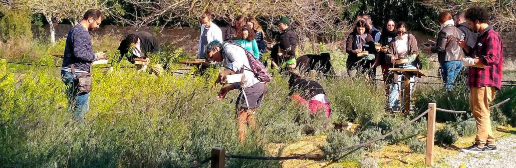 talleres de hierbas payesas